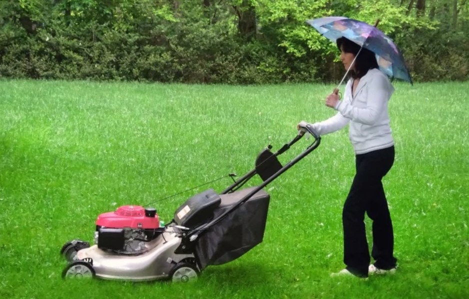 Choosing the Right Type of Mower For Your Property