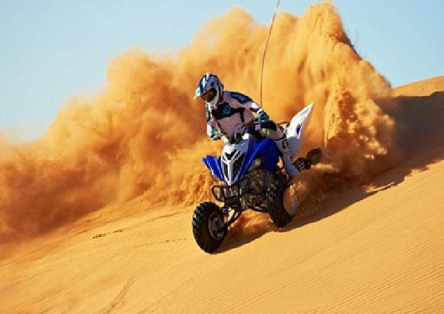 Dubai: Unique MORNING Safari incl. 30min Quad Bike - Tour