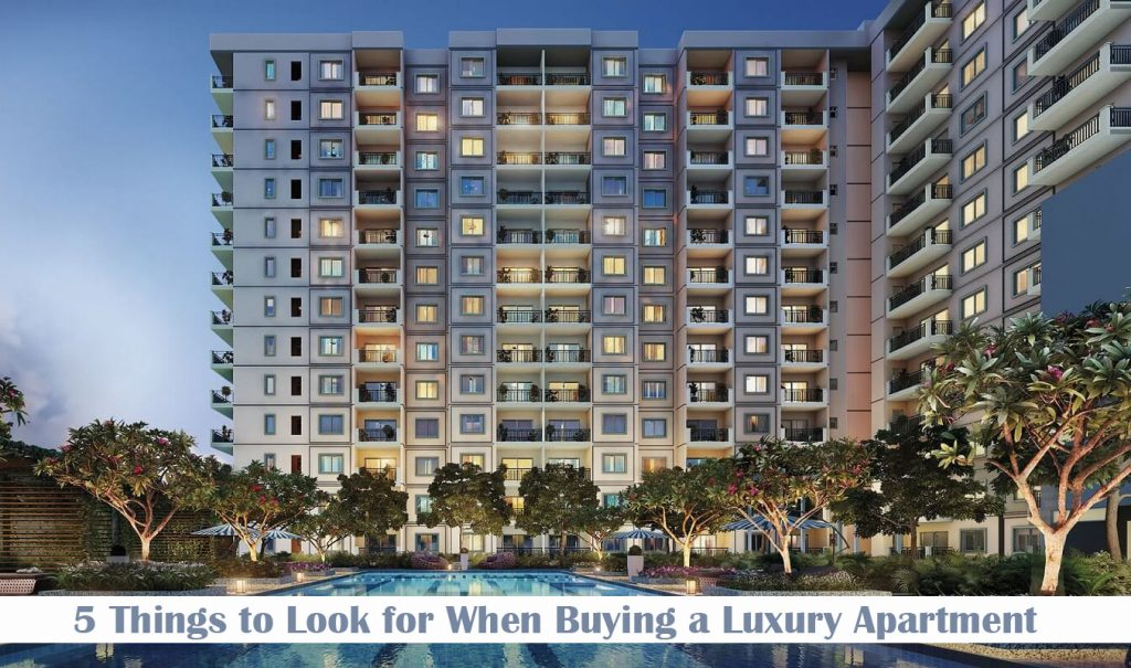 5 Things to Look for When Buying a Luxury Apartment
