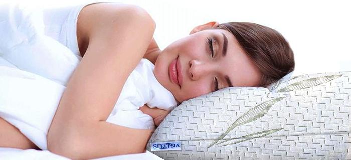 Bamboo Pillow Queen Size