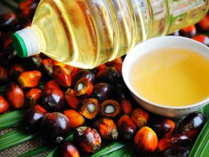 AN405-palm-oil-fruit-732x549-Thumb