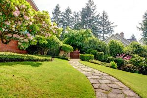 Using professional garden services to care for and maintain your lawn and garden is a simple and effective way of getting that dream home exterior
